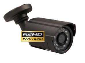 Cámara Full-HD 1080P exterior con Leds infrarrojos 20 m 1134205