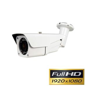 Cámara de videovigilancia Full-HD 1080P con Zoom y visión nocturna