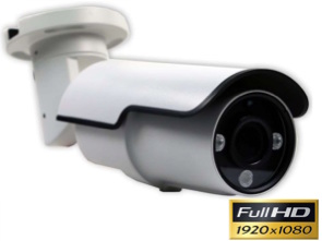 Cámara Full-HD 1080P con lente varifocal motorizada y Leds infrarrojos 45 m 1134260